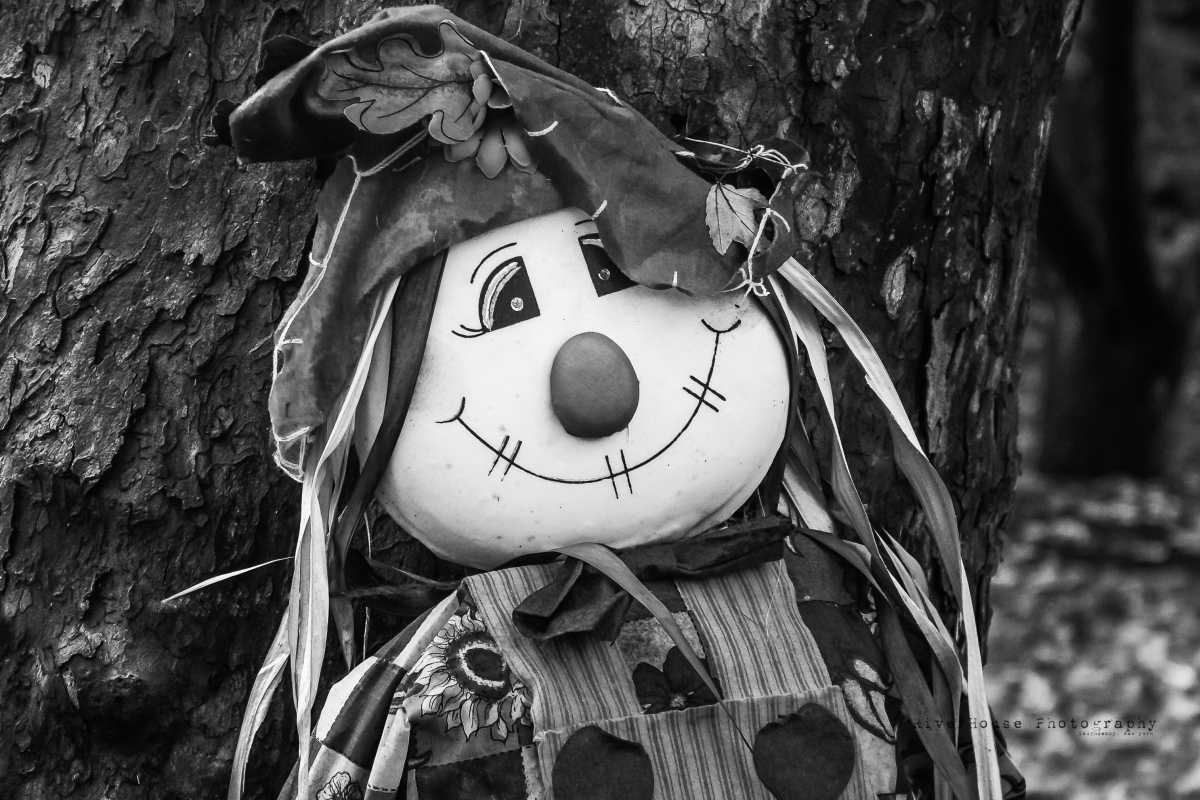 FallClown-